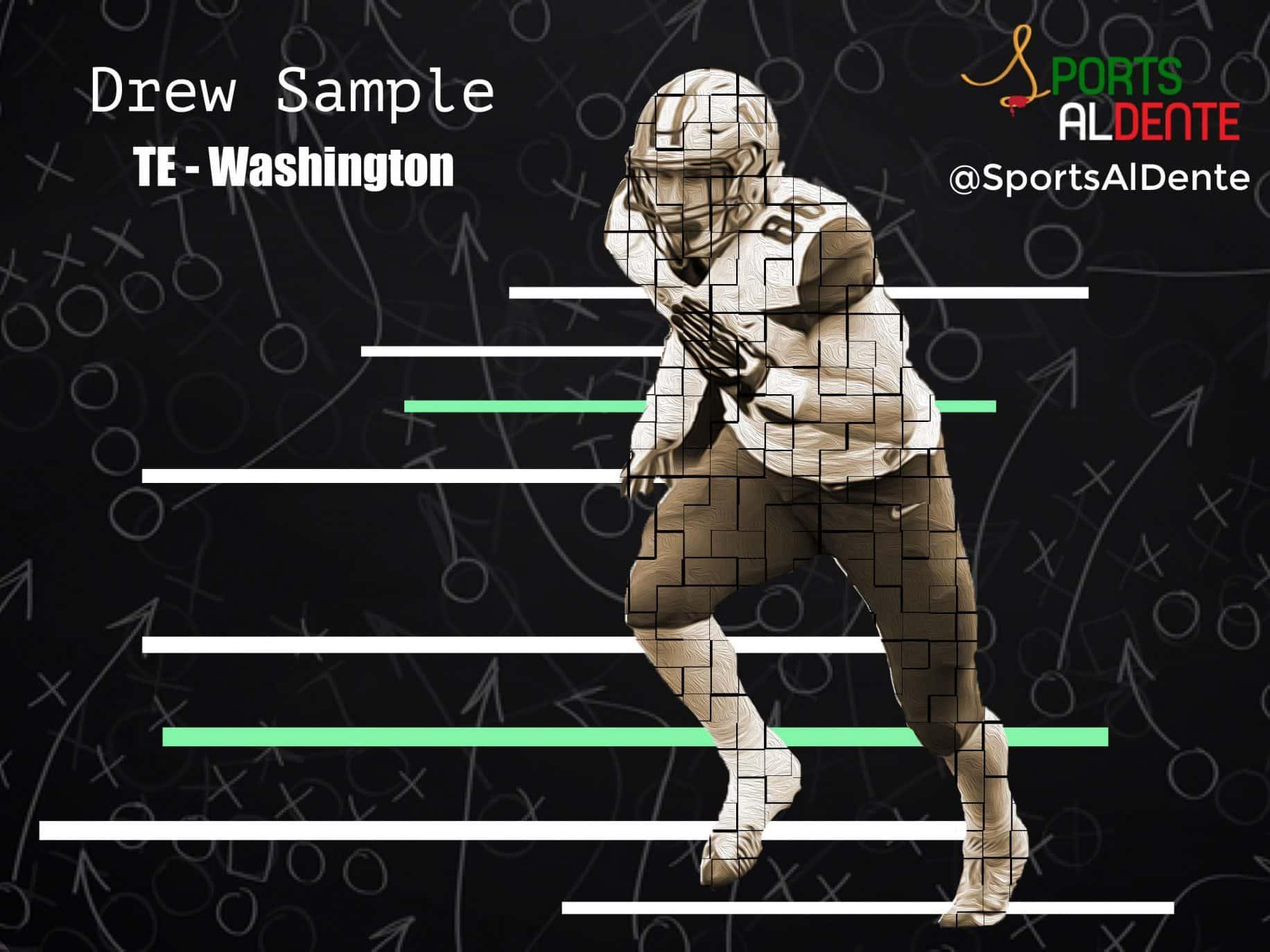 Drew Sample NFL Draft Profile